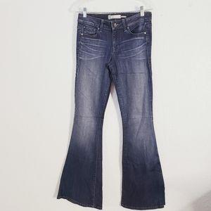Anthropolgie Level 99 Mid Rise Flare Leg Jeans